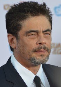 800px-benicio_del_toro_-_guardians_of_the_galaxy_premiere_-_july_2014_28cropped29